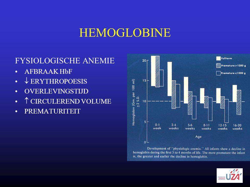 HEMOGLOBINE FYSIOLOGISCHE ANEMIE AFBRAAK HbF  ERYTHROPOESIS