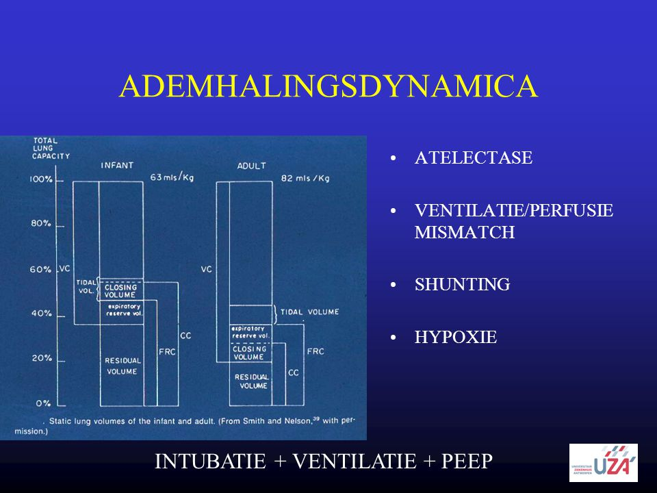 ADEMHALINGSDYNAMICA INTUBATIE + VENTILATIE + PEEP ATELECTASE