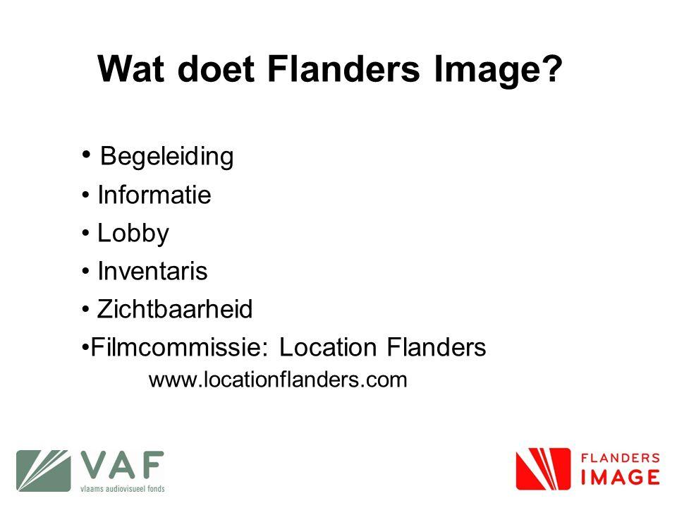 Wat doet Flanders Image