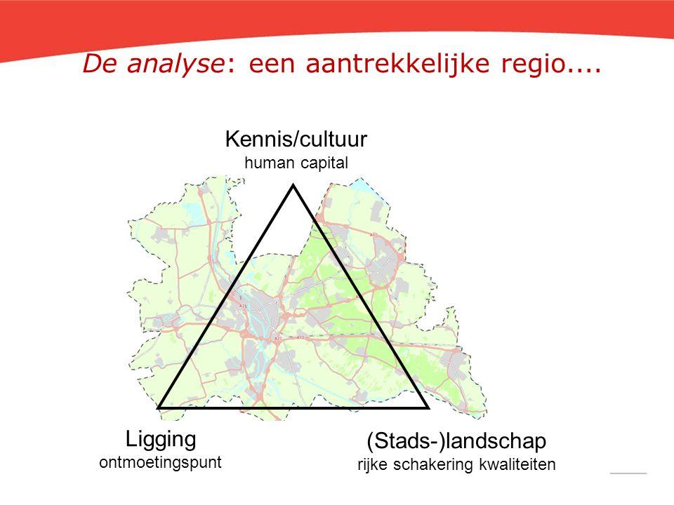 De analyse: een aantrekkelijke regio....