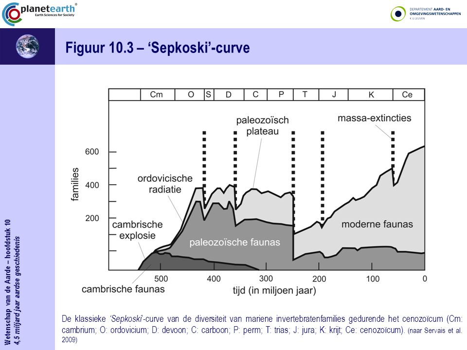 Figuur 10.3 – 'Sepkoski'-curve
