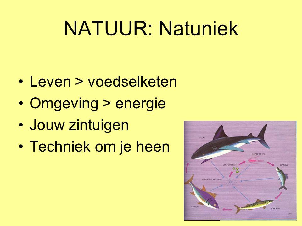 NATUUR: Natuniek Leven > voedselketen Omgeving > energie