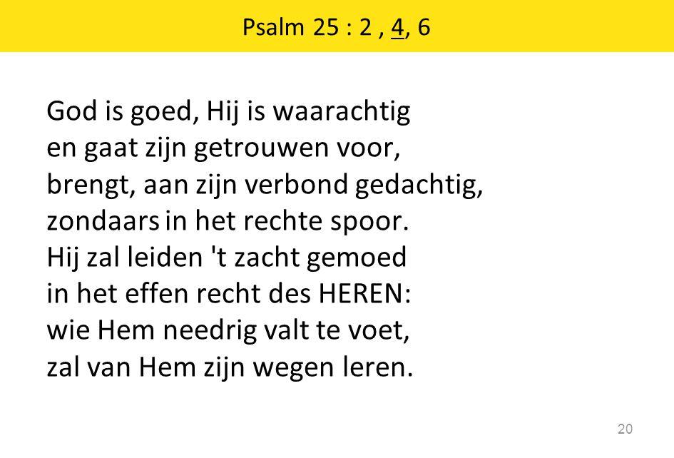 God is goed, Hij is waarachtig en gaat zijn getrouwen voor,
