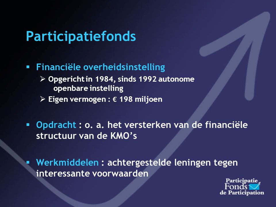 Participatiefonds Financiële overheidsinstelling