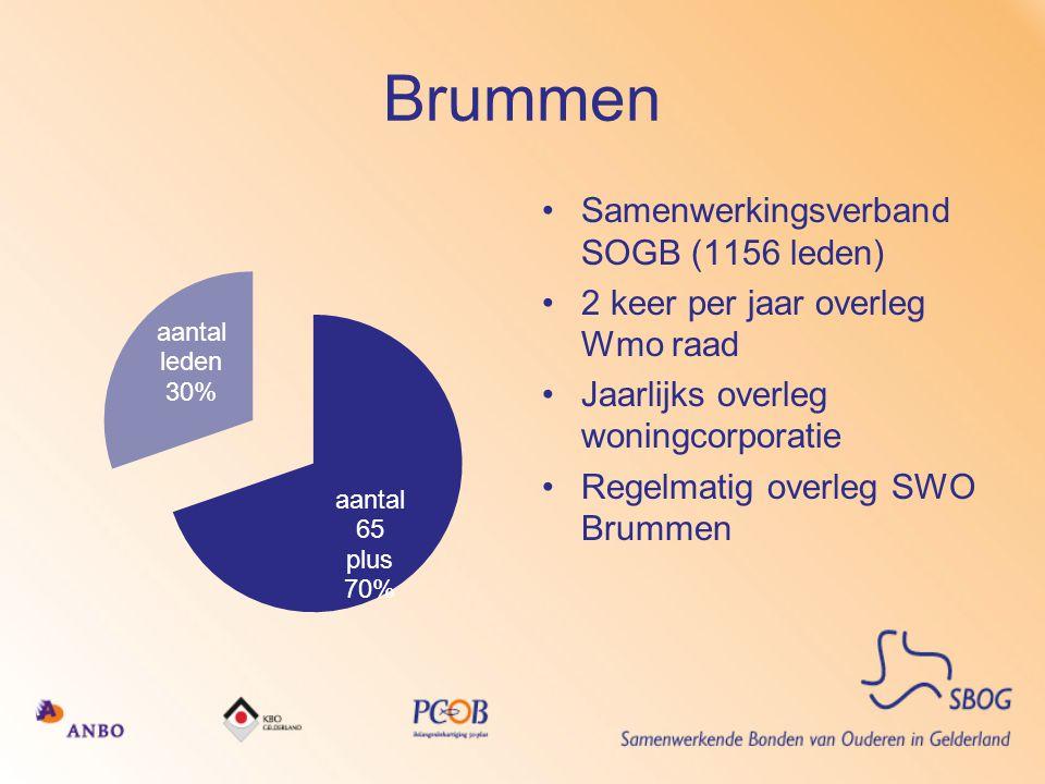 Brummen Samenwerkingsverband SOGB (1156 leden)