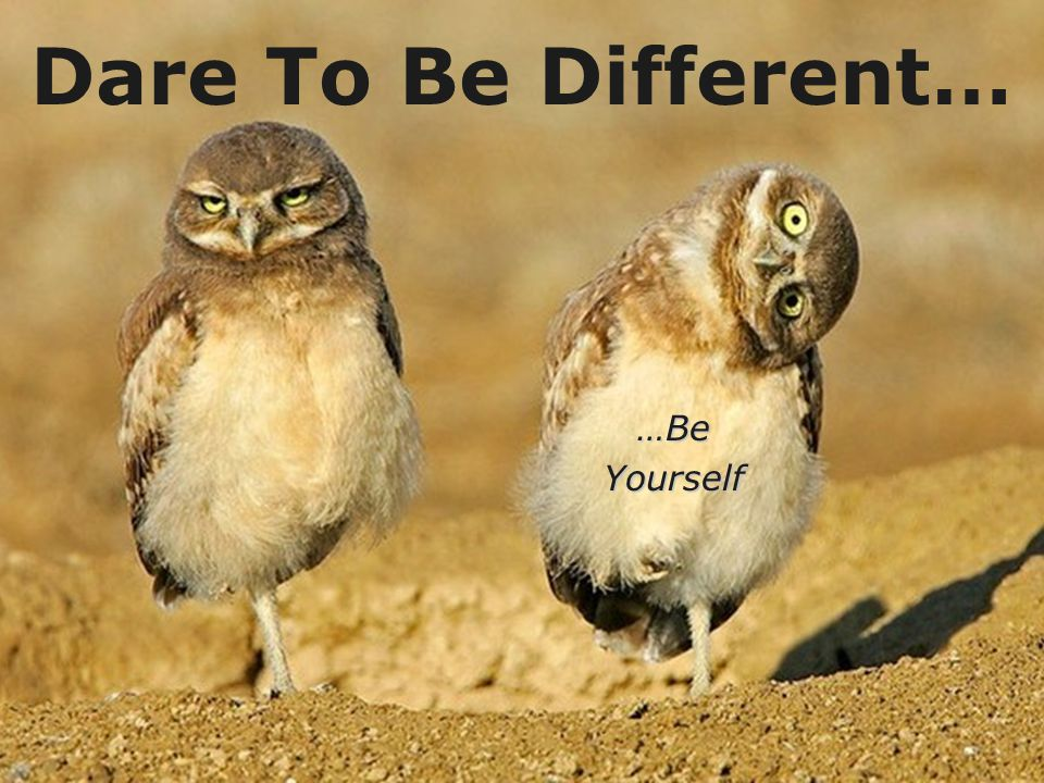 Dare To Be Different… …Be Yourself