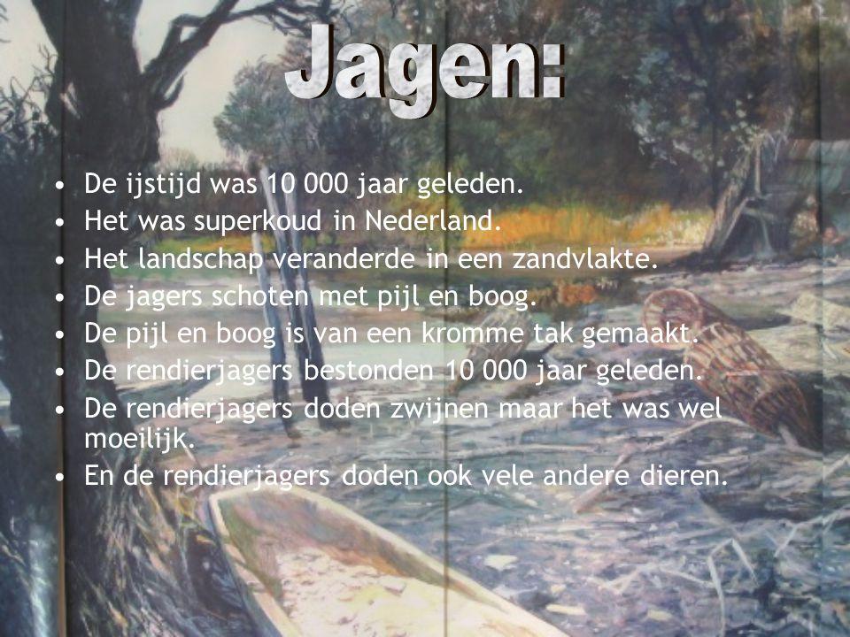 Jagen: De ijstijd was 10 000 jaar geleden.