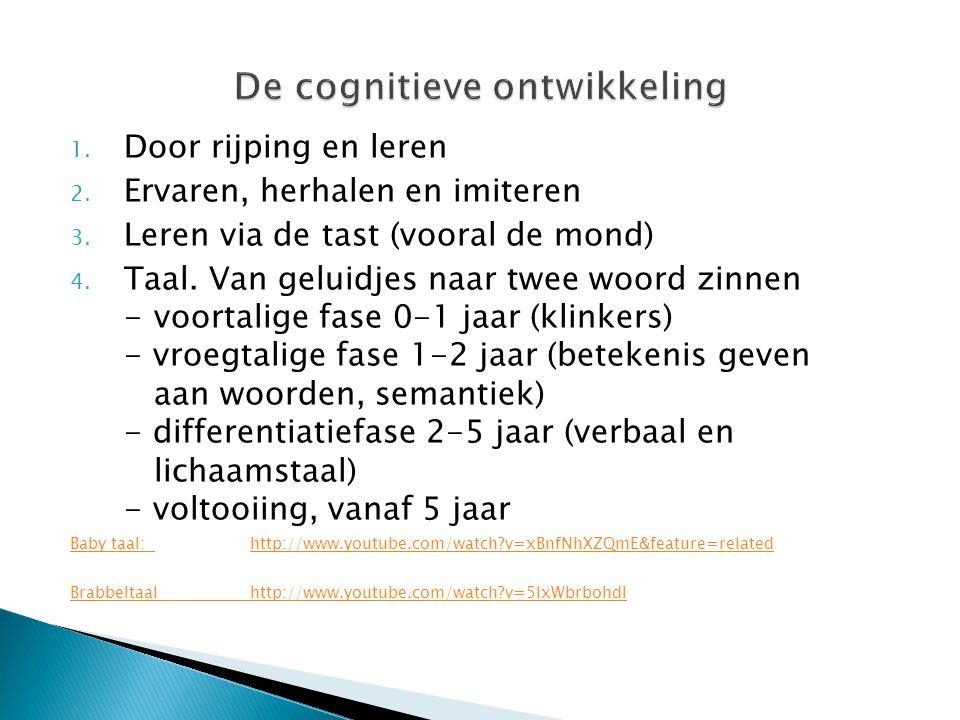 De cognitieve ontwikkeling
