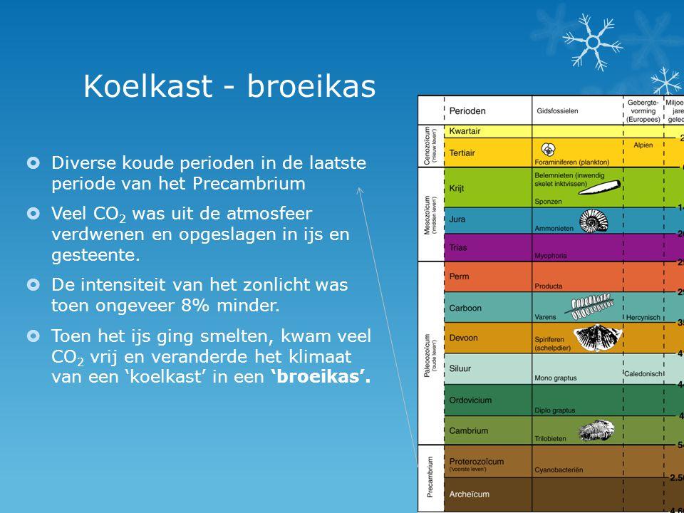 Koelkast - broeikas Diverse koude perioden in de laatste periode van het Precambrium.