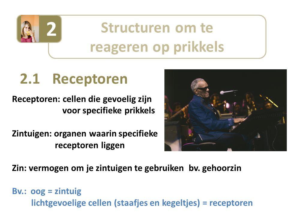 2 Structuren om te reageren op prikkels 2.1 Receptoren
