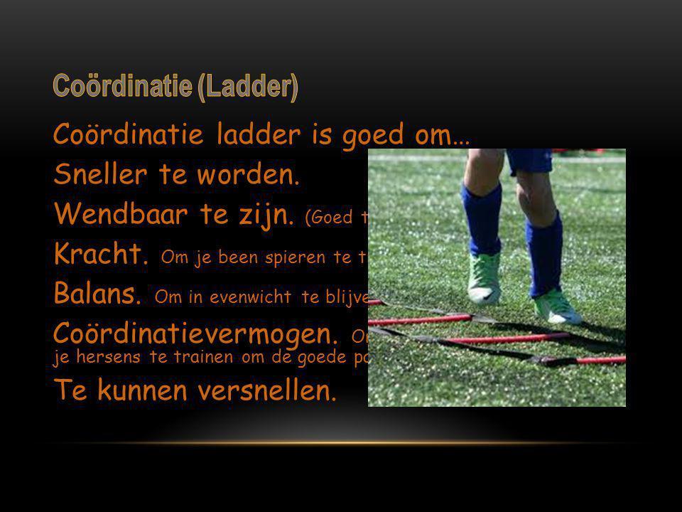 Coördinatie (Ladder)