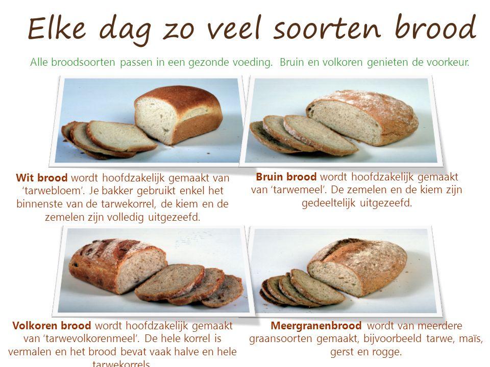 Elke dag zo veel soorten brood