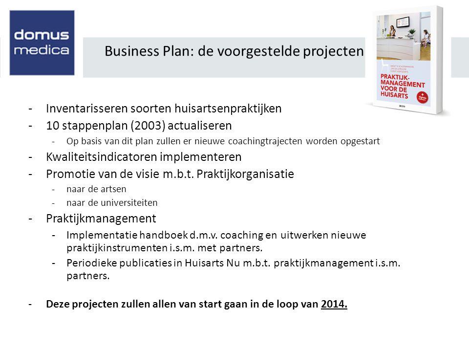 Business Plan: de voorgestelde projecten