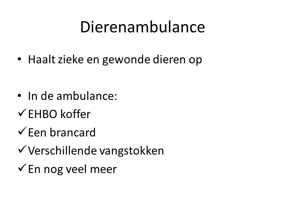 Dierenambulance Haalt zieke en gewonde dieren op In de ambulance: