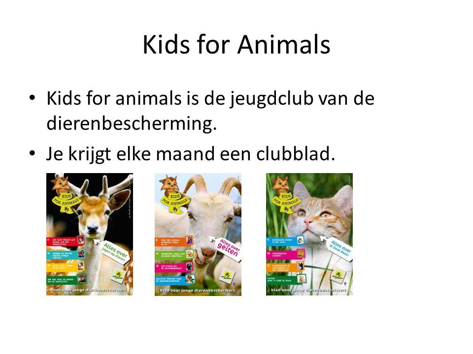 Kids for Animals Kids for animals is de jeugdclub van de dierenbescherming.