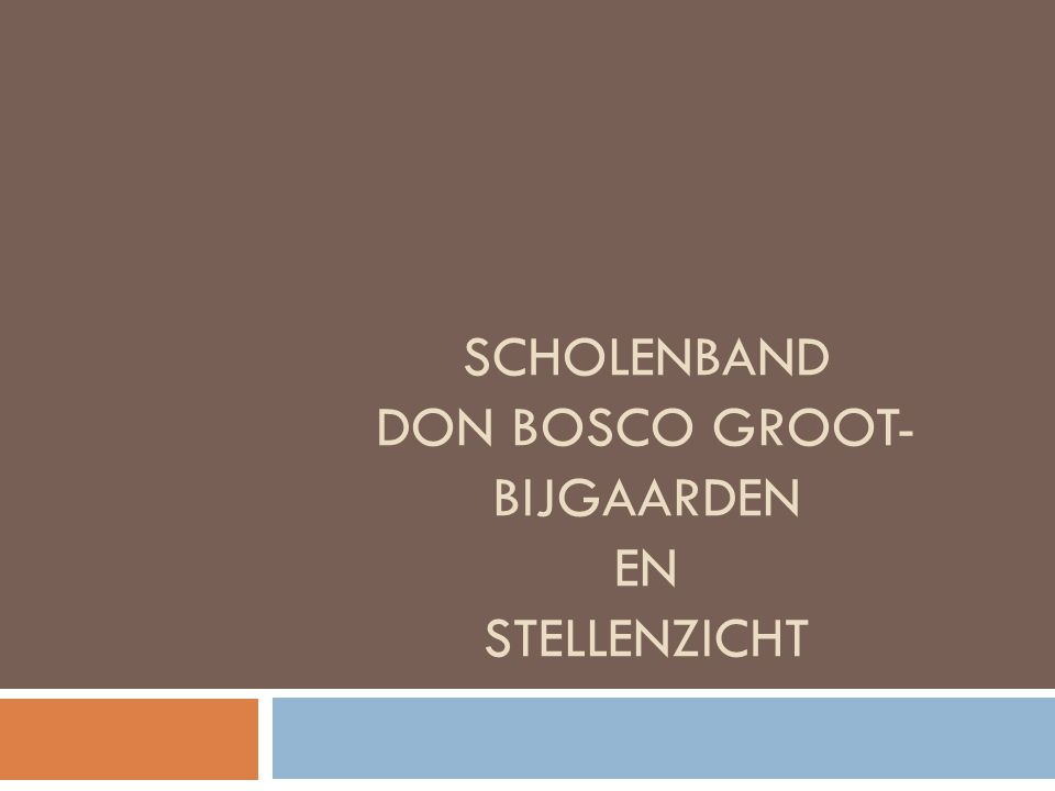 Scholenband Don Bosco Groot-bijgaarden en Stellenzicht
