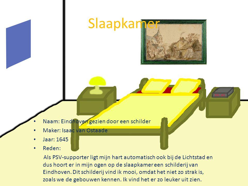 Slaapkamer Naam: Eindhoven gezien door een schilder