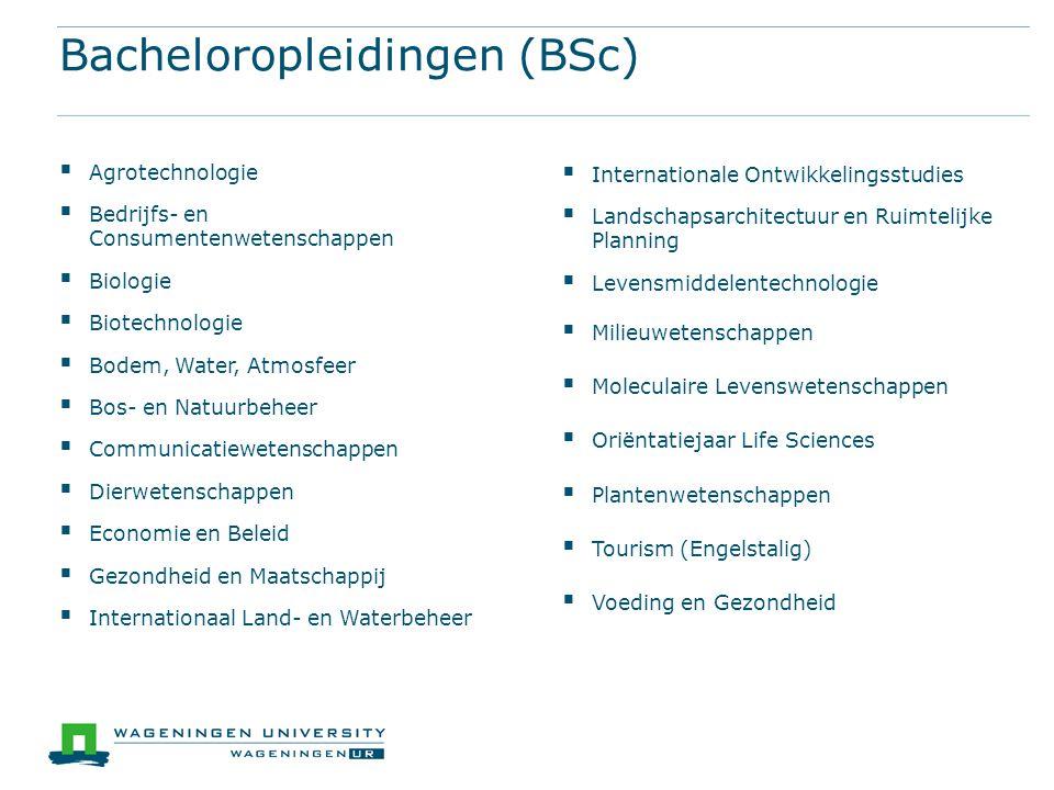 Bacheloropleidingen (BSc)