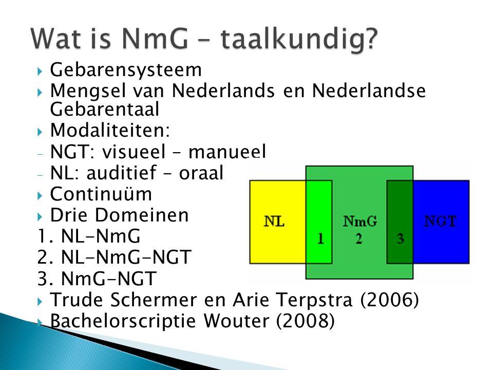 Wat is NmG – taalkundig Gebarensysteem