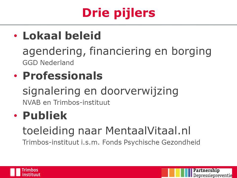 Drie pijlers Lokaal beleid agendering, financiering en borging
