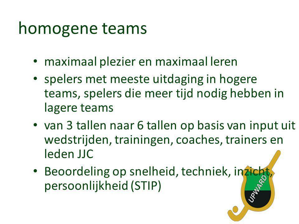 homogene teams maximaal plezier en maximaal leren
