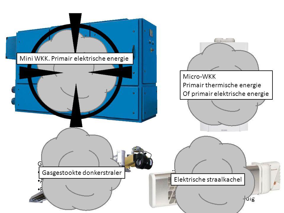 Mini WKK: Te grote aanpassing van de installatie. Te duur. Mini WKK. Primair elektrische energie.