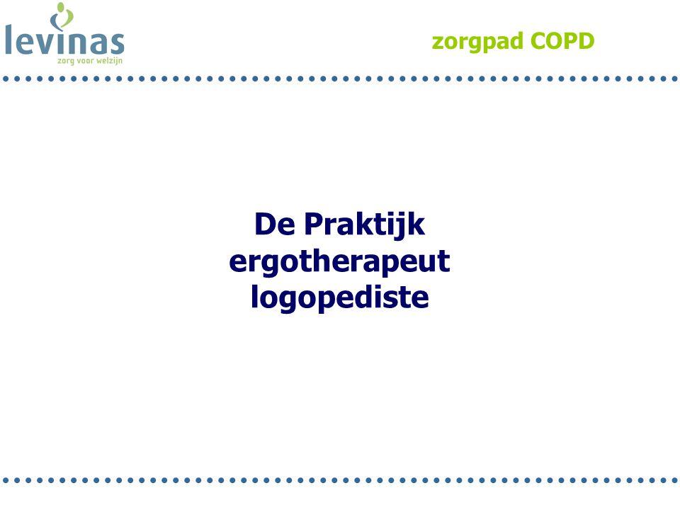 De Praktijk ergotherapeut logopediste