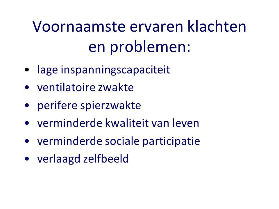 Voornaamste ervaren klachten en problemen:
