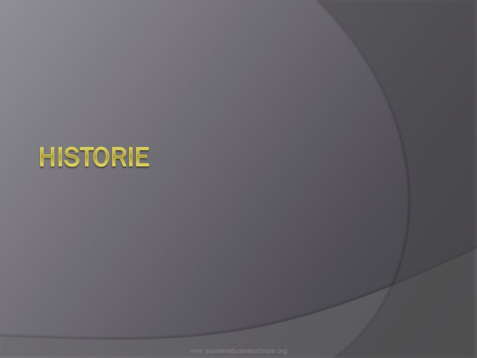 HISTORIE www.surinamebusinessforum.org
