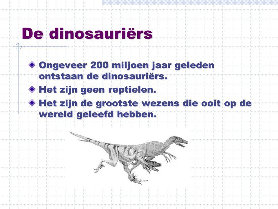 De dinosauriërs Ongeveer 200 miljoen jaar geleden ontstaan de dinosauriërs. Het zijn geen reptielen.