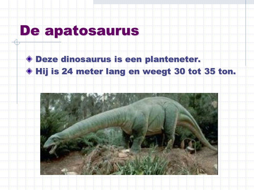 De apatosaurus Deze dinosaurus is een planteneter.
