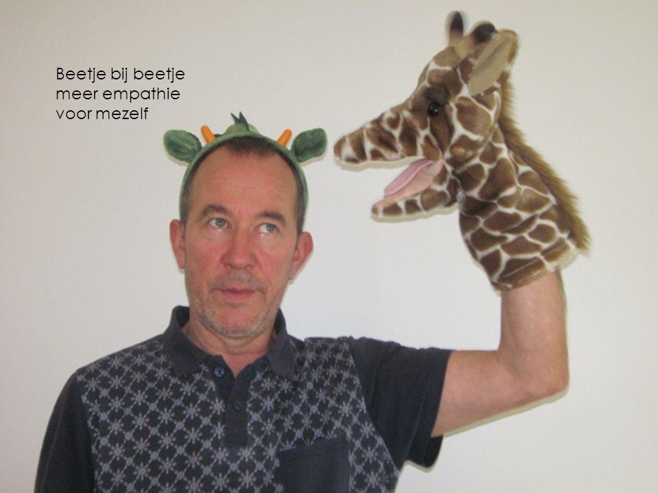 Beetje bij beetje meer empathie voor mezelf