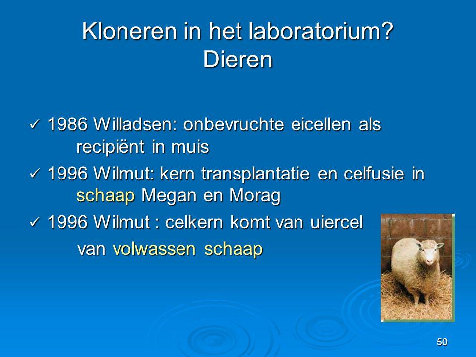 Kloneren in het laboratorium Dieren