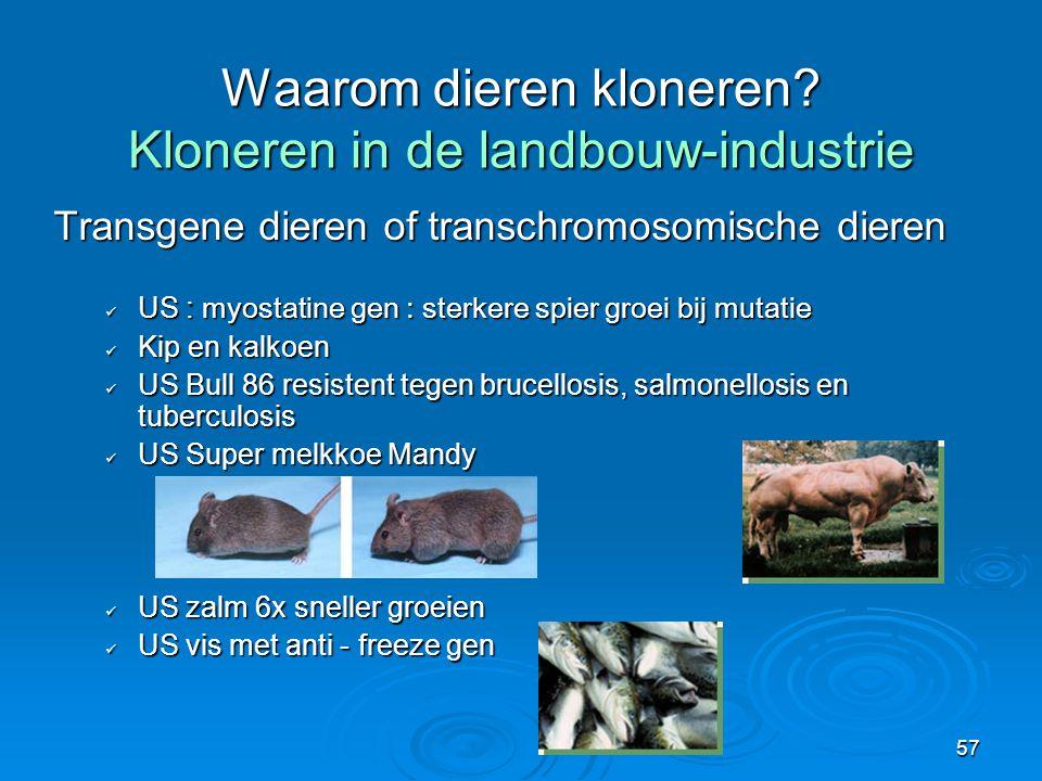 Waarom dieren kloneren Kloneren in de landbouw-industrie