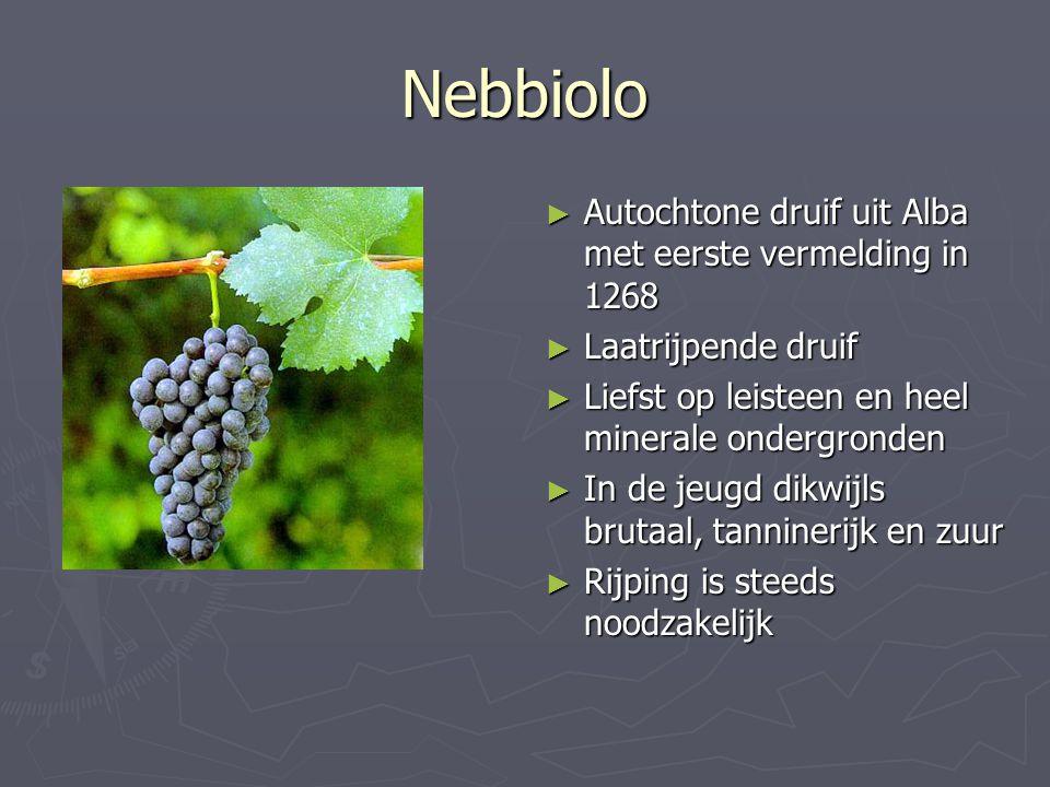 Nebbiolo Autochtone druif uit Alba met eerste vermelding in 1268