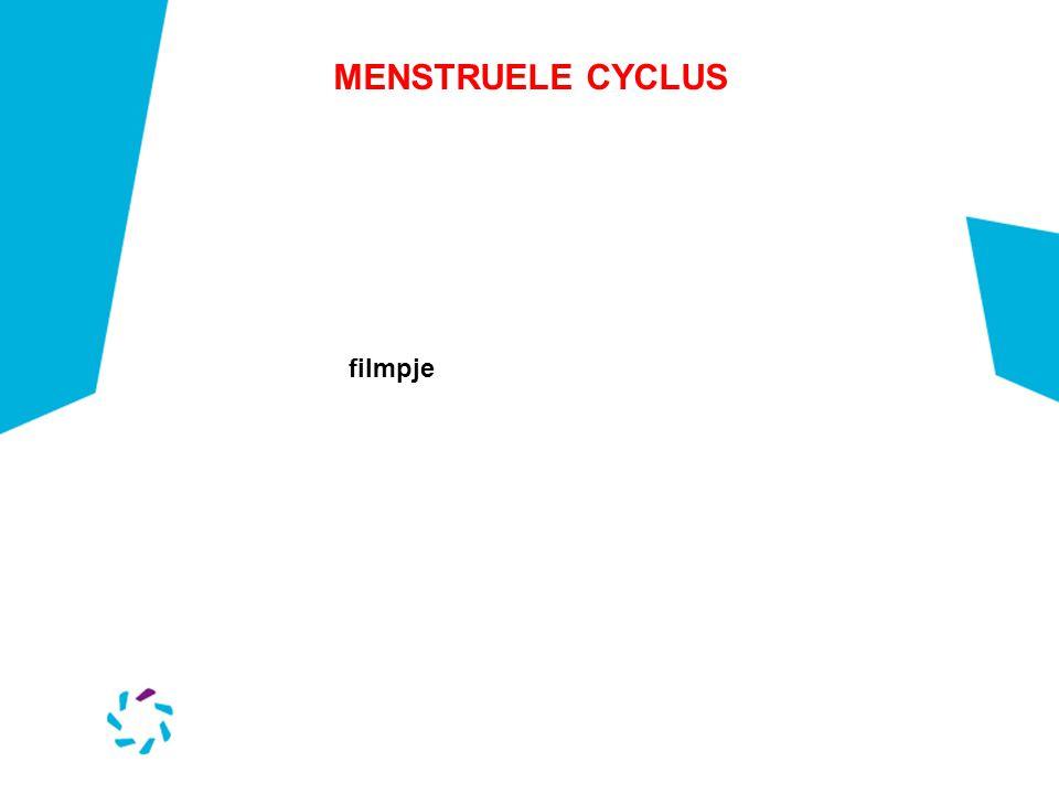 MENSTRUELE CYCLUS filmpje