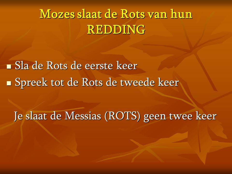 Mozes slaat de Rots van hun REDDING