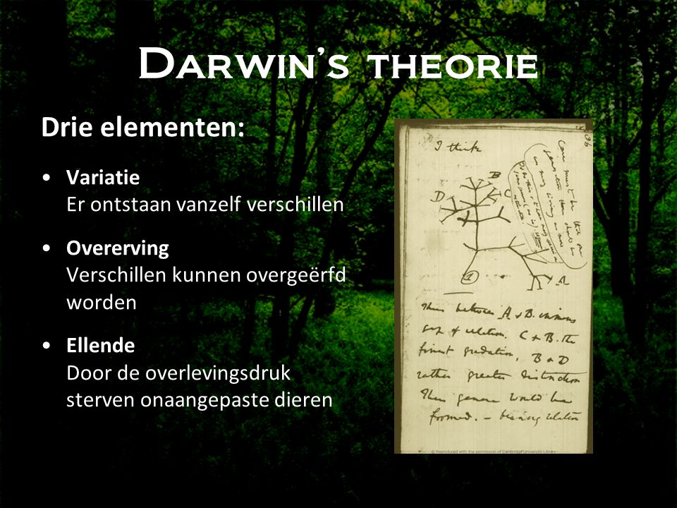 Darwin's theorie Drie elementen: