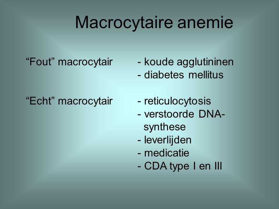 Macrocytaire anemie Fout macrocytair - koude agglutininen