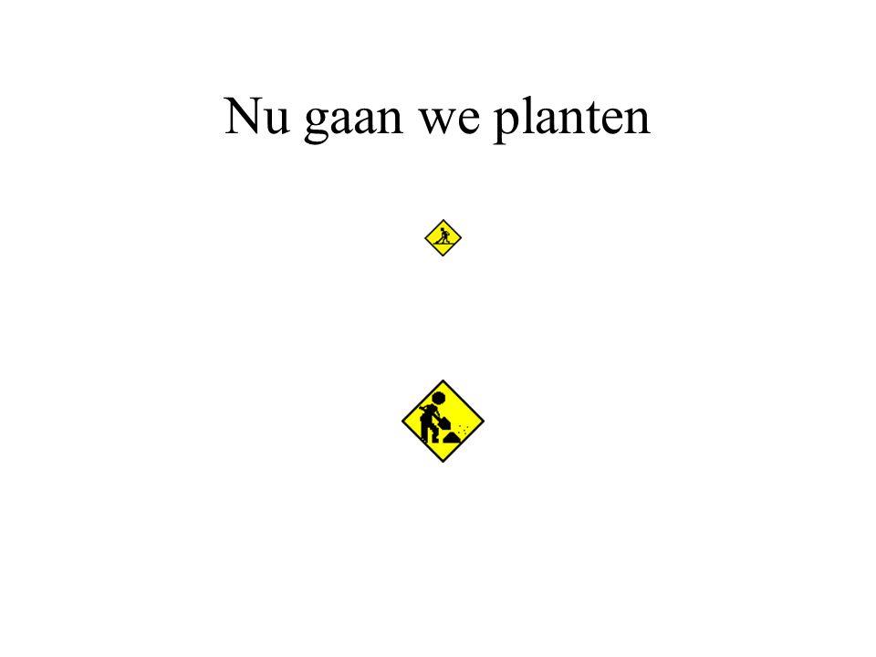 Nu gaan we planten