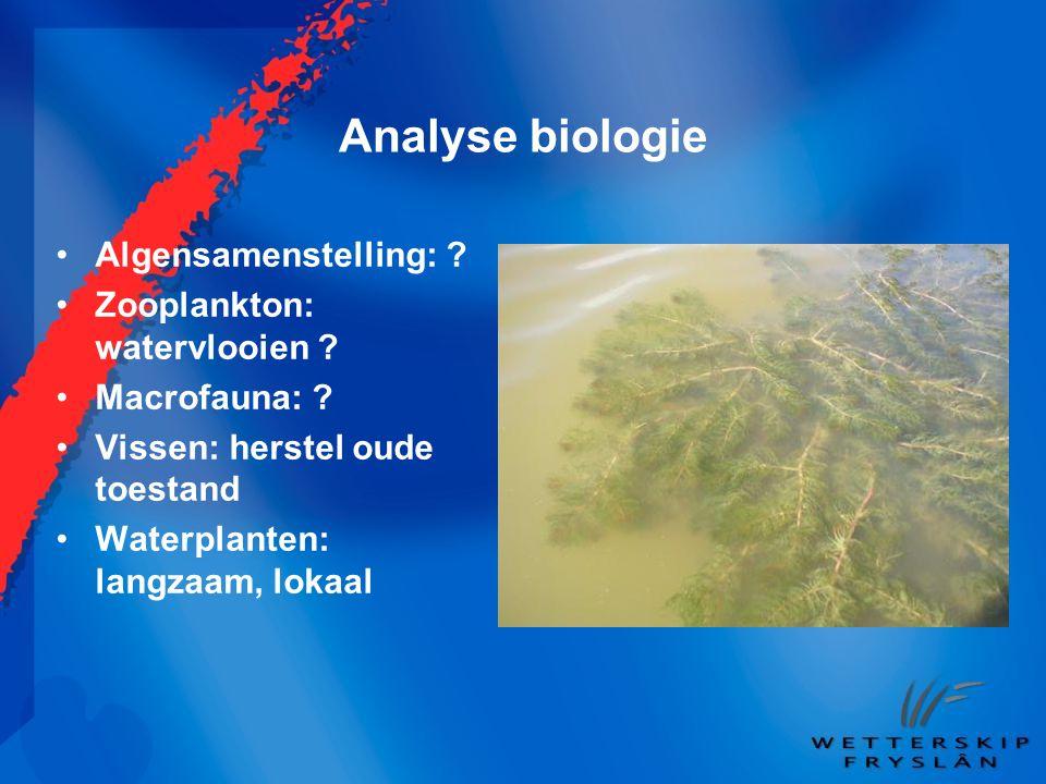 Analyse biologie Algensamenstelling: Zooplankton: watervlooien