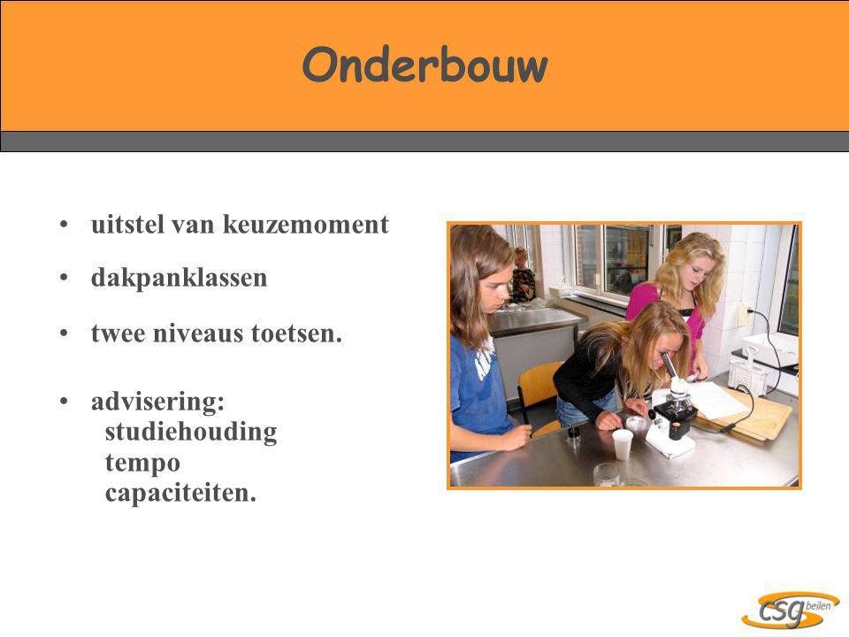 Onderbouw uitstel van keuzemoment dakpanklassen twee niveaus toetsen.