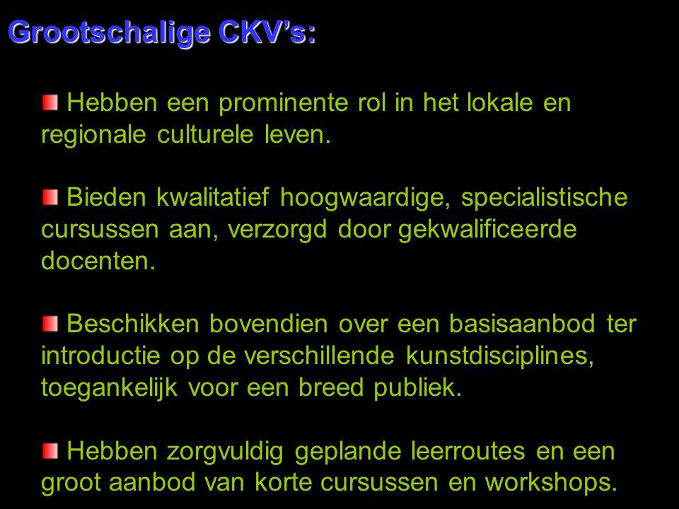 Grootschalige CKV's: Hebben een prominente rol in het lokale en regionale culturele leven.