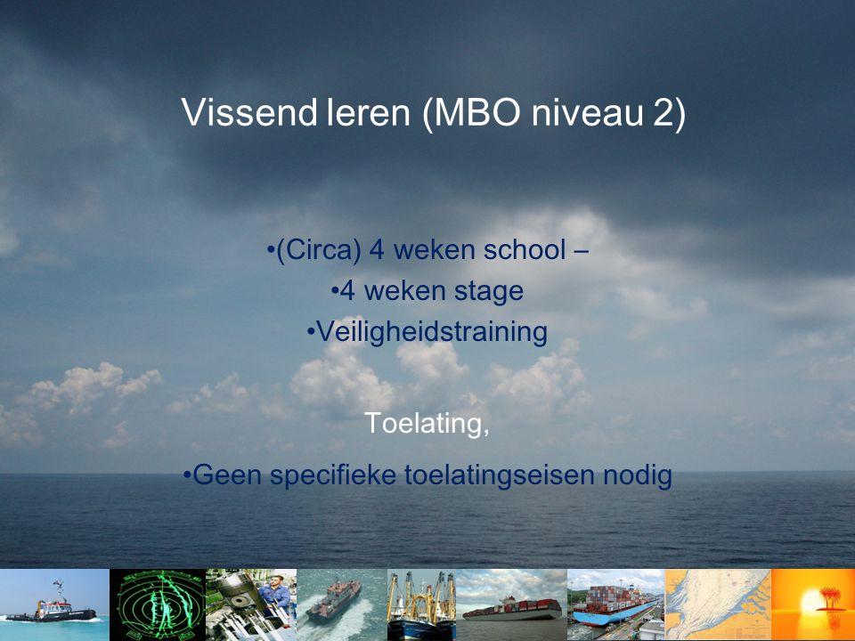 Vissend leren (MBO niveau 2)