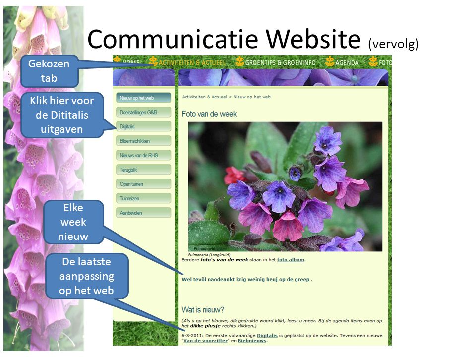 Communicatie Website (vervolg)