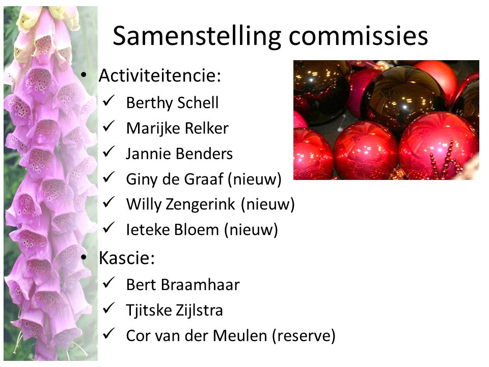 Samenstelling commissies