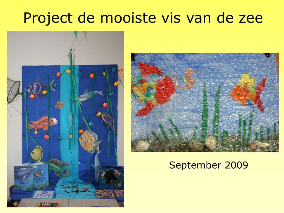 Project de mooiste vis van de zee