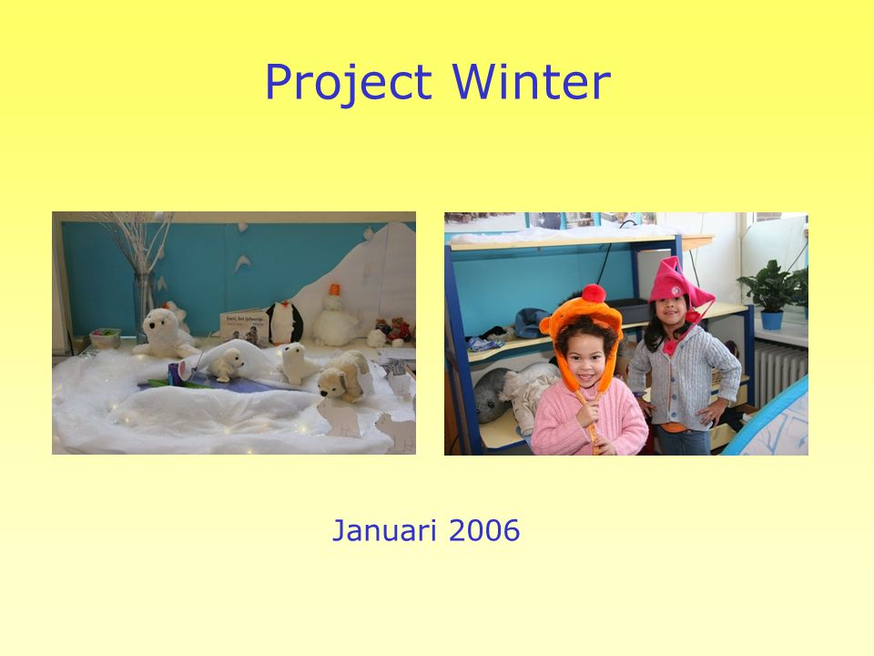 Project Winter Januari 2006