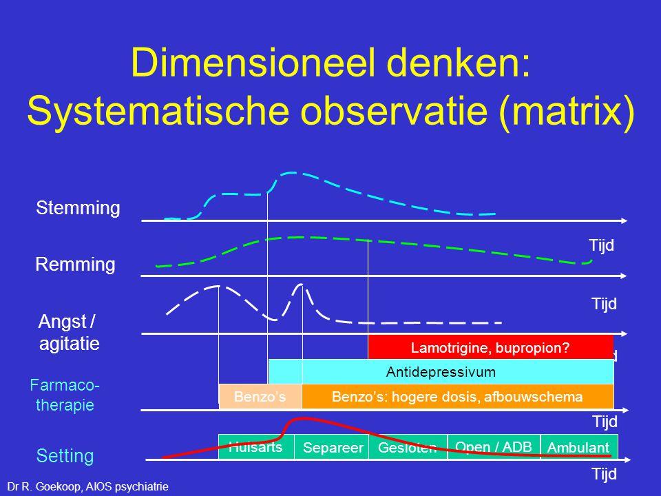 Dimensioneel denken: Systematische observatie (matrix)