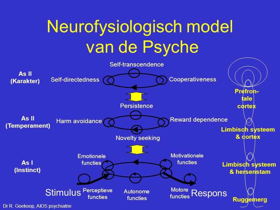 Neurofysiologisch model van de Psyche